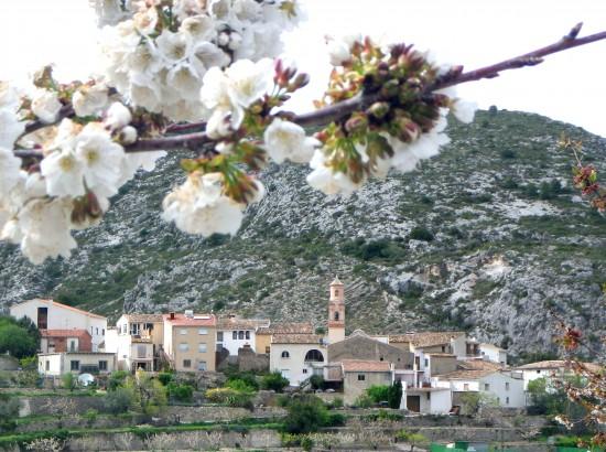 Vall de Gallinera 9